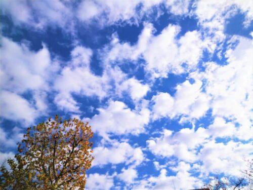 高積雲 秋の雲
