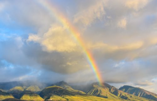 雨上がりの綺麗な虹