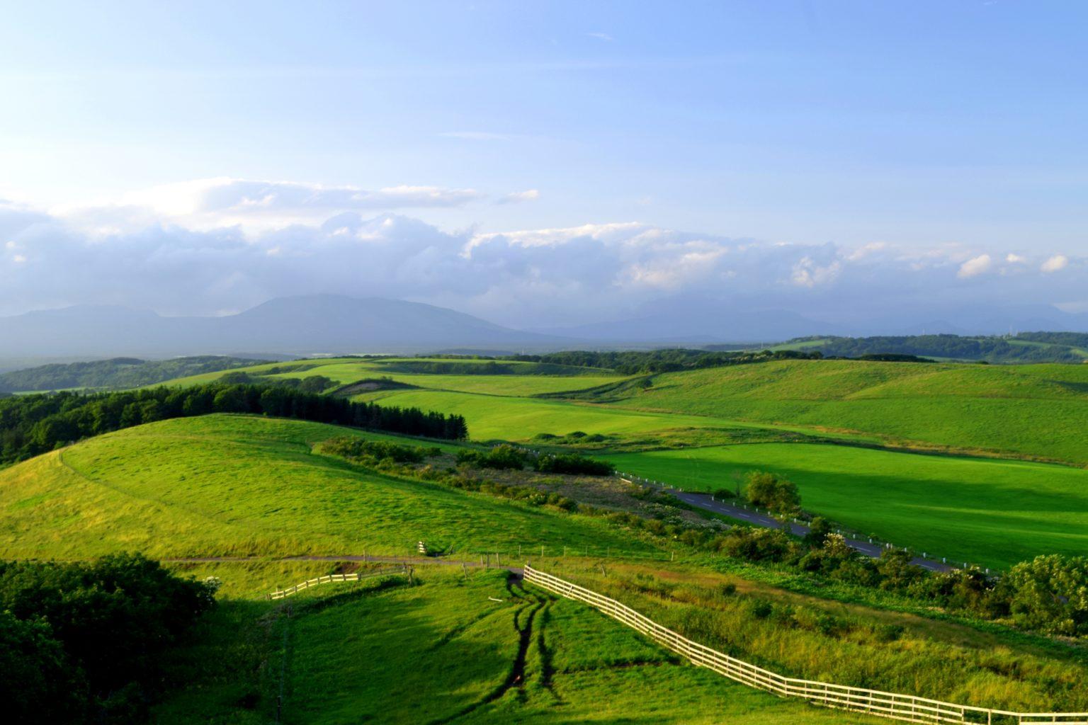 北海道の大草原