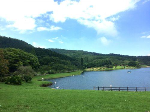 志高湖キャンプ