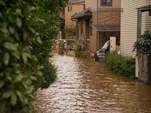 水害時の住宅地