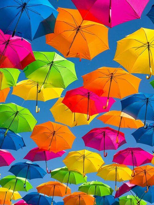 雨でも元気カラフルな傘