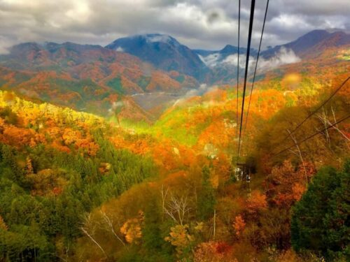 ロープウェイからの紅葉の眺め
