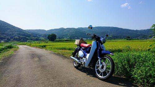 夏の田舎道ホンダのカブでトコトコと散策