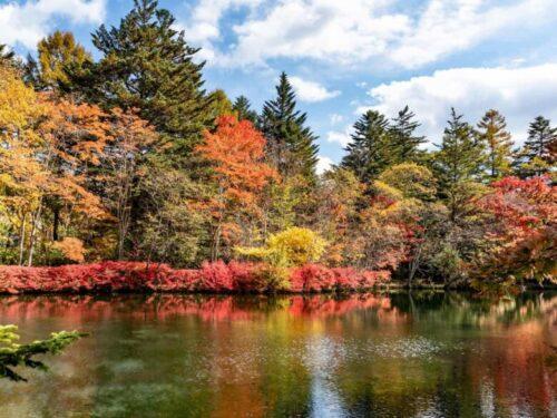 軽井沢 紅葉の雲場池