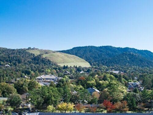 秋の若草山