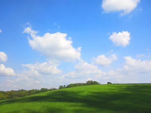 青空と芝生と雲