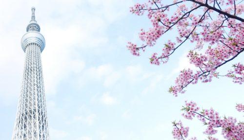東京スカイツリーと桜の背景