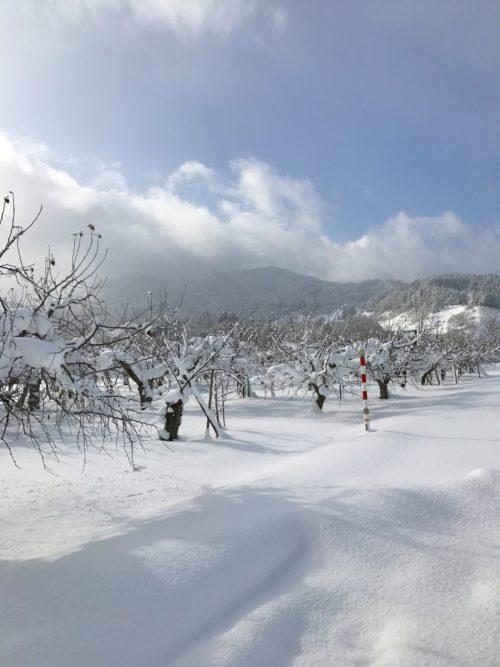 真冬の青森県