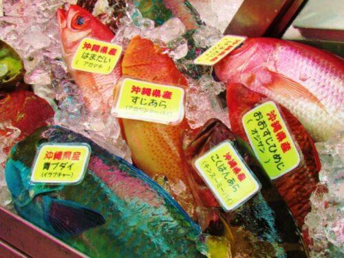 沖縄 魚市場