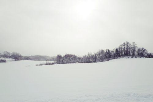 北海道の冬の風物詩 ニセコ
