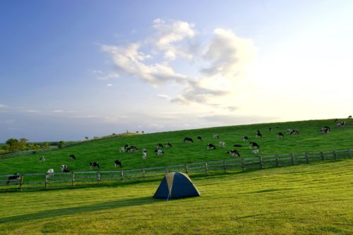 北海道 キャンプ