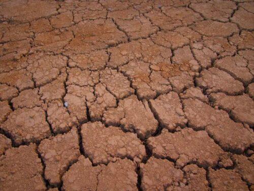 日照り続きで乾燥した土