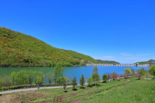新緑のオタルナイ湖(上流側から朝里ダム堤体を望む)