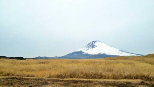 静岡 裾野 キャンプ