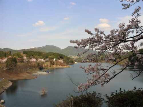 緑川ダム湖畔